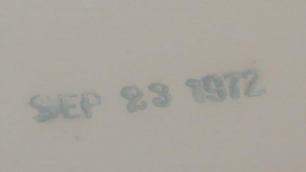 20190730_195740.jpg
