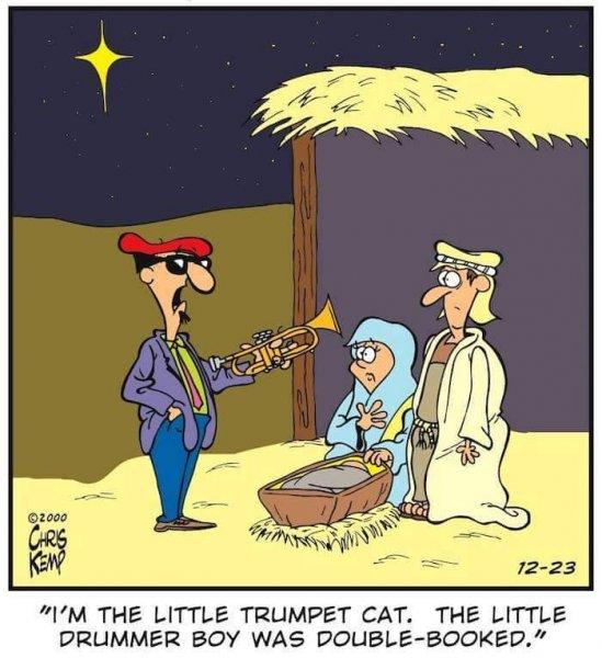 Little Trumpet Cat.jpg