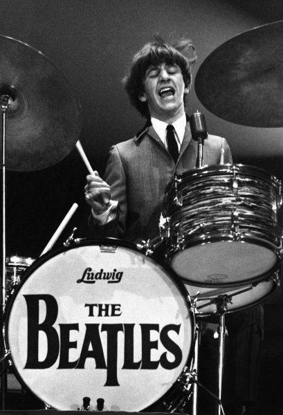 Ringo097.jpg