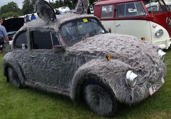 The-Furry-Volkswagen.jpg