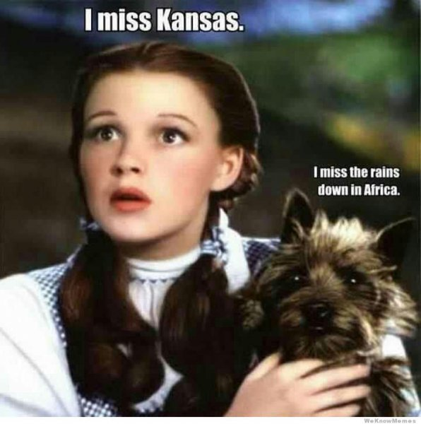 Toto&Dorothy1.jpg