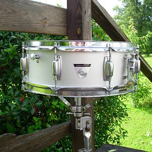 ludwig standard snare