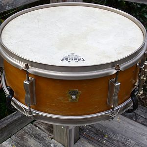 Ludwig Trans Badge Maple