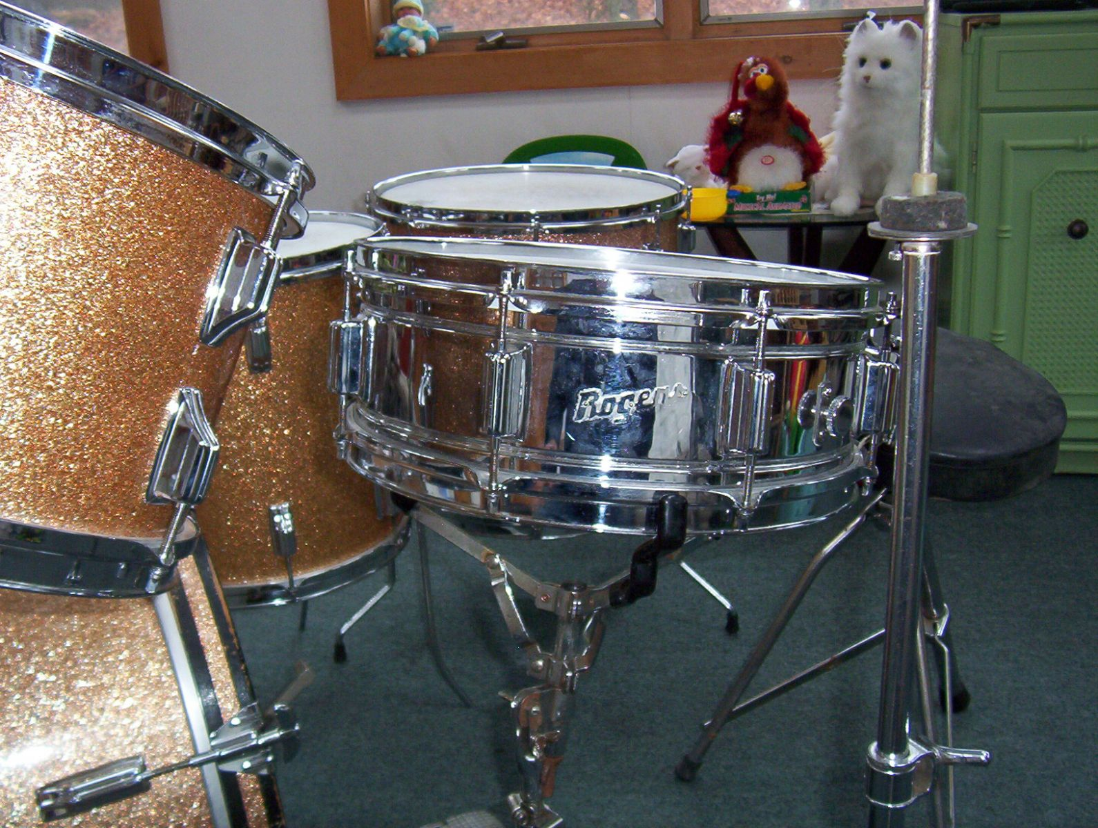 Rogers Snare